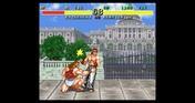 Retro Classix: Fighter's History