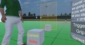 Umpire Simulator