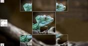 Puzzle Art: Reptiles