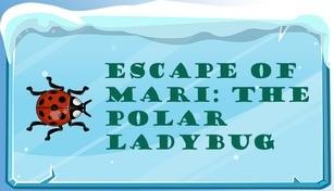 Escape of Mari: The Polar Ladybug