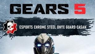 Gears 5 - Esports Chrome Steel Onyx Guard Casan