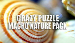 Crazy Puzzle -Macro Nature
