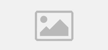 Streets of Fury EX