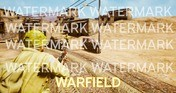 Warfield Background Pack