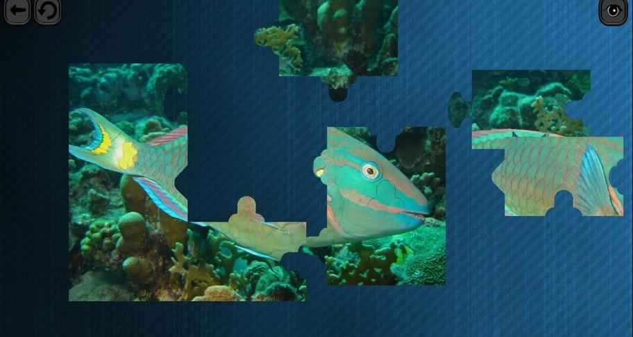 Puzzles for smart: Underwater Kingdom