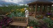 MM Garden