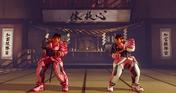 STREET FIGHTER V -  BCRF Pink Ribbon Bundle
