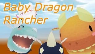 Baby Dragon Rancher