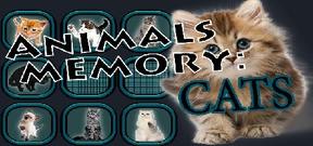 Animals Memory: Cats