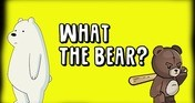 What The Bear?